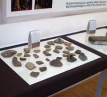 Muzej Pećine Orlovača