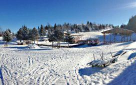 brus-januar